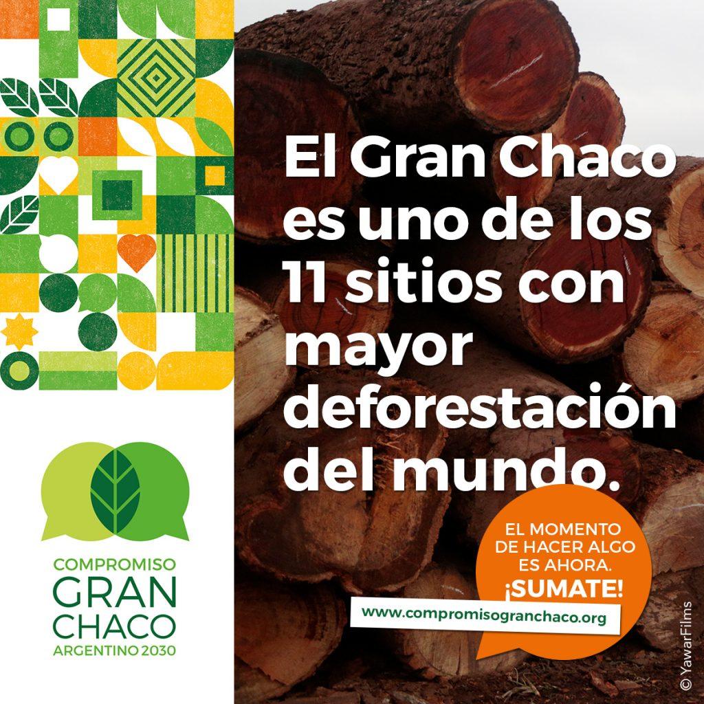 El Gran Chaco es luno de los 11 sitios con mayor deforestación del mundo